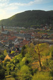 Heidelberg Old Town Royalty Free Stock Photography
