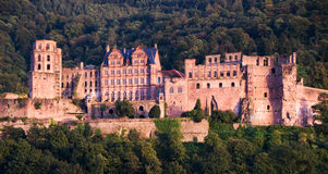 Heidelberg Red Castle Royalty Free Stock Photography