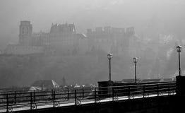 Heidelberg slott i morgonljus royaltyfri foto