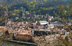 Heidelberg Universit Immagine Stock