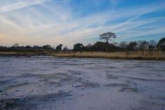 Heidemoor eingelassen die Winterzeit Lizenzfreie Stockfotos