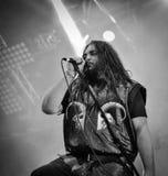 Heidevolk生活音乐会2016年, Hellfest 库存照片