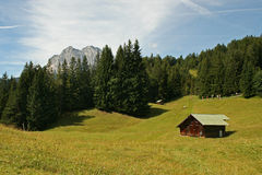 Heidi Country. A mountain meadow in the bavarian alps royalty free stock images