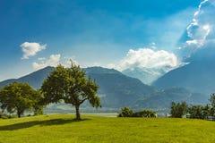 Heididorf at Maienfeld, Switzerland stock image