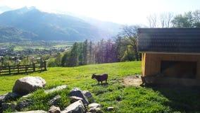 Heidiland in Switzerland Royalty Free Stock Images