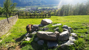 Heidiland in Switzerland Stock Image