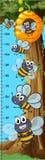 Height measurement chart bees flying. Illustration vector illustration