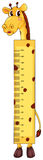 Height measurement chart with giraffe character. Illustration royalty free illustration