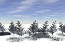 Height of Winter. Illustration of a frigid winter scene Stock Image