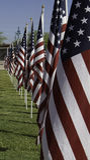 911 heilende Feld-Erinnerungsamerikanische Flaggen Lizenzfreie Stockbilder