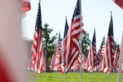 9/11 heilende Feld-Flaggen Stockbild