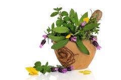 Heilende Kräuter und Blumen lizenzfreie stockfotografie