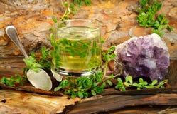 Heilender Tee von Brahmi Lizenzfreies Stockfoto