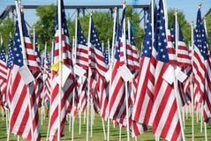 Heilendes Feld auf 09-11-2010 Lizenzfreie Stockbilder
