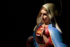 Heilig Hart van Mary royalty-vrije stock foto