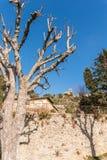 Heiligdom van Santa Margherita in Cortona stock afbeeldingen