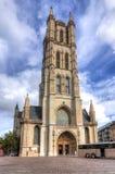 Heilige Bavo Cathedral, Mijnheer, België stock afbeeldingen