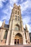Heilige Bavo Cathedral, Mijnheer, België stock afbeelding