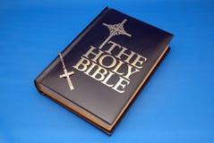 Heilige Bibel und Rosenbeet Lizenzfreie Stockbilder