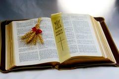 Heilige Bibel; Wort Gottes mit Welle des Weizens Stockbilder