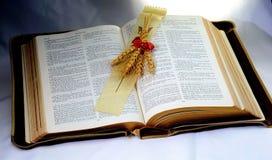 Heilige Bibel; Wort Gottes mit Welle des Weizens Lizenzfreie Stockbilder