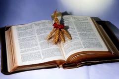 Heilige Bibel; Wort Gottes mit Welle des Weizens Lizenzfreies Stockbild