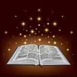 Heilige Bijbel. vector illustratie