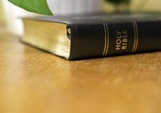 Heilige bijbel die op houten lijst naast installatie, gouden gloed liggen backg royalty-vrije stock fotografie
