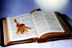 Heilige Bijbel; Word van God met schacht van tarwe royalty-vrije stock afbeeldingen