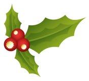 Heilige Bladeren - Kerstmis Vectorillustratie Royalty-vrije Stock Fotografie