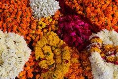 Heilige bloemen Stock Fotografie