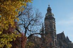 Heilige Elisabeth Cathedral en de herfstbomen stock foto's