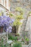 Heilige-Guilhem-le-Désert, Frankrijk Bloemenvoorgevel van een huis in de middeleeuwse oude stad Het charmeren, oriëntatiepunt stock afbeelding