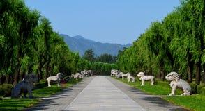 Heilige Manier aan Ming Tombs, Peking, China stock afbeelding