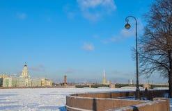 Heilige Petersburg in de winter Stock Afbeeldingen