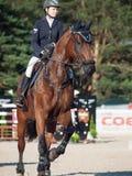 HEILIGE 05 PETERSBURG-JULI: Rider Aleksandra Pushkarskaya op Amand Royalty-vrije Stock Afbeeldingen