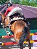 HEILIGE 06 PETERSBURG-JULI: Rider Anna Gromzina op Pimlico in Stock Foto