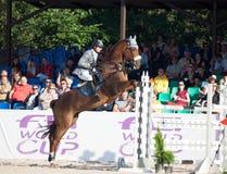 HEILIGE 05 PETERSBURG-JULI: Rider Maxim Kryna op Klooney 26 in CSI Stock Foto
