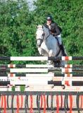 HEILIGE 05 PETERSBURG-JULI: Rider Tiit Kivisild o nCinnamonin Royalty-vrije Stock Afbeelding
