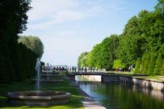 Heilige-Petersburg, Rusland - Juni 03, 2016: de zomer Peterhof Royalty-vrije Stock Afbeeldingen