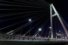 Heilige-Petersburg Rusland Kabel-vastgebonden brug bij nacht stock foto