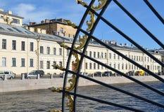 Heilige-Petersburg, stadsmeningen Royalty-vrije Stock Fotografie