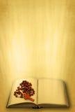 Heilige Schrift und Rosenbeet Stockbilder