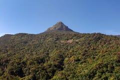 Heiligen Berg-Adams Spitze Sri Lanka Lizenzfreie Stockfotografie