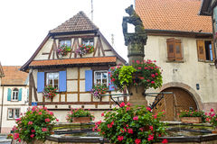 Heiligenstein (Alsace) - Fountain with flowers Stock Photography