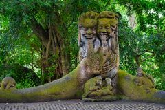 Heiliger Affe Forest Sanctuary in Ubud Bali-Insel, Indonesien Stockfoto