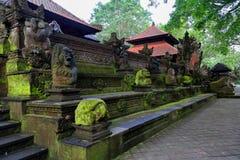 Heiliger Affe Forest Sanctuary in Ubud Bali-Insel, Indonesien Stockfotografie