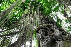 Heiliger Affe Forest Sanctuary in Ubud Bali-Insel, Indonesien Lizenzfreies Stockfoto