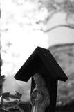 Heiliger Franziskus von Assisi-Statue Lizenzfreie Stockfotografie