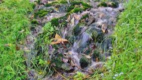 Heiliger Slowene zwölf Frühlinge in Izborsk, Lizenzfreie Stockfotos
